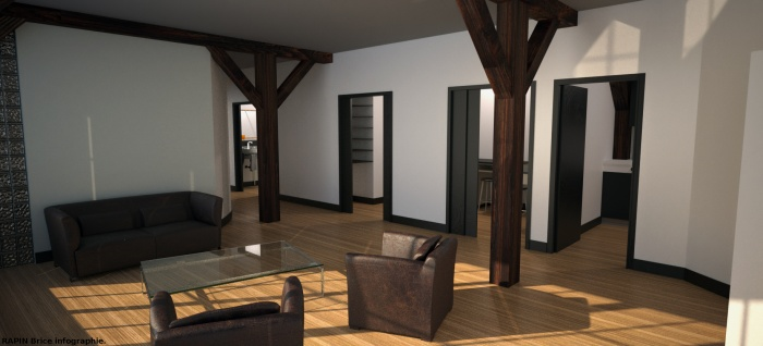 Aménagement d'un appartement parisien : appart05