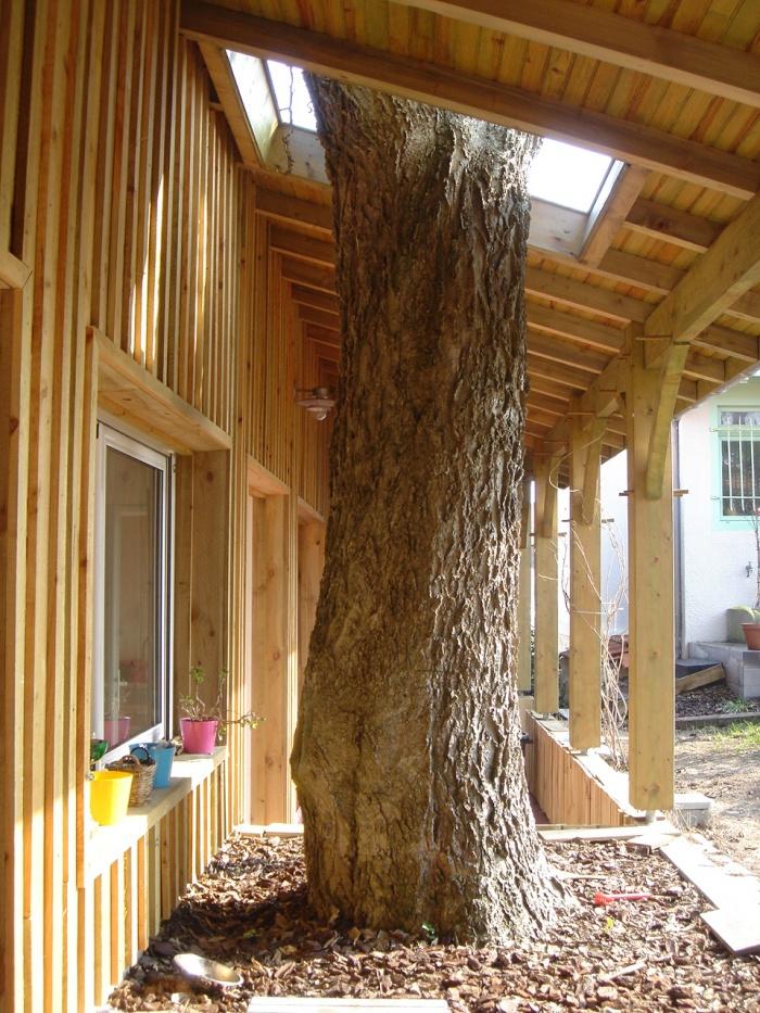 Cabanons en bois : l'arbre conservé