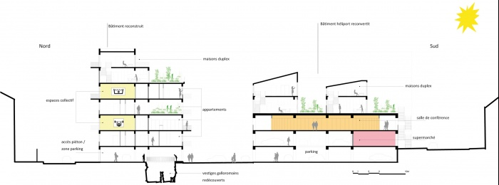 Réhabilitation d'un immeuble hospitalier en logements : coupe longitudinale