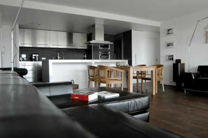 Appartement en open space