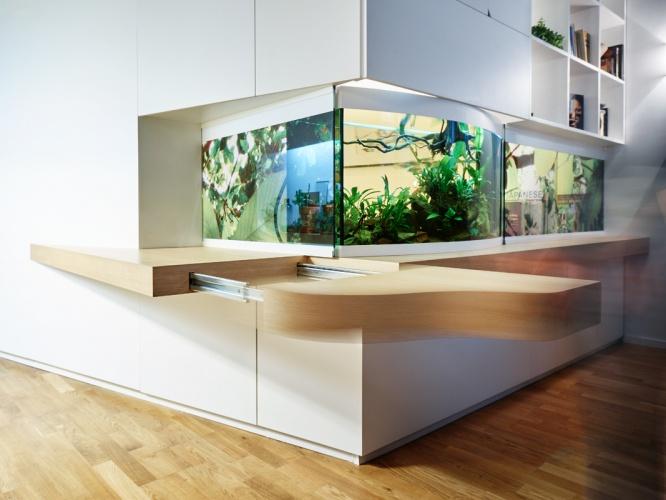 Aquatic life : JMCA Marais005 Copyright David Foessel